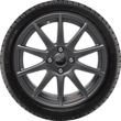 "Performance Rad 17"" leichtes flow-form Winterkomplettrad mit Ford Performance Logo, 10-Speichen-Design, Magnetite Matt"